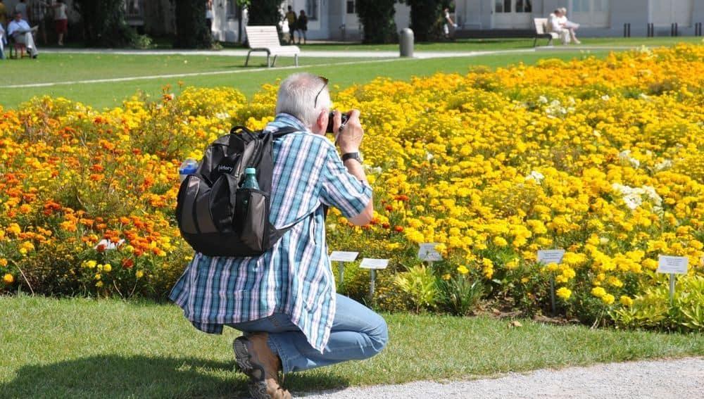 man taking photo of flowers
