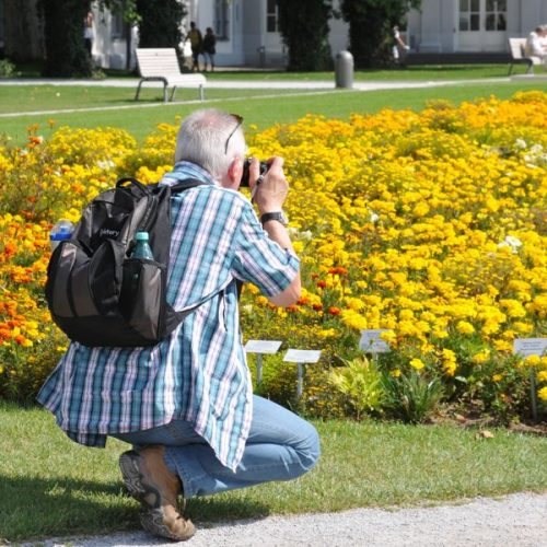 Lowepro ProTactic Camera Backpack: 350 vs 450